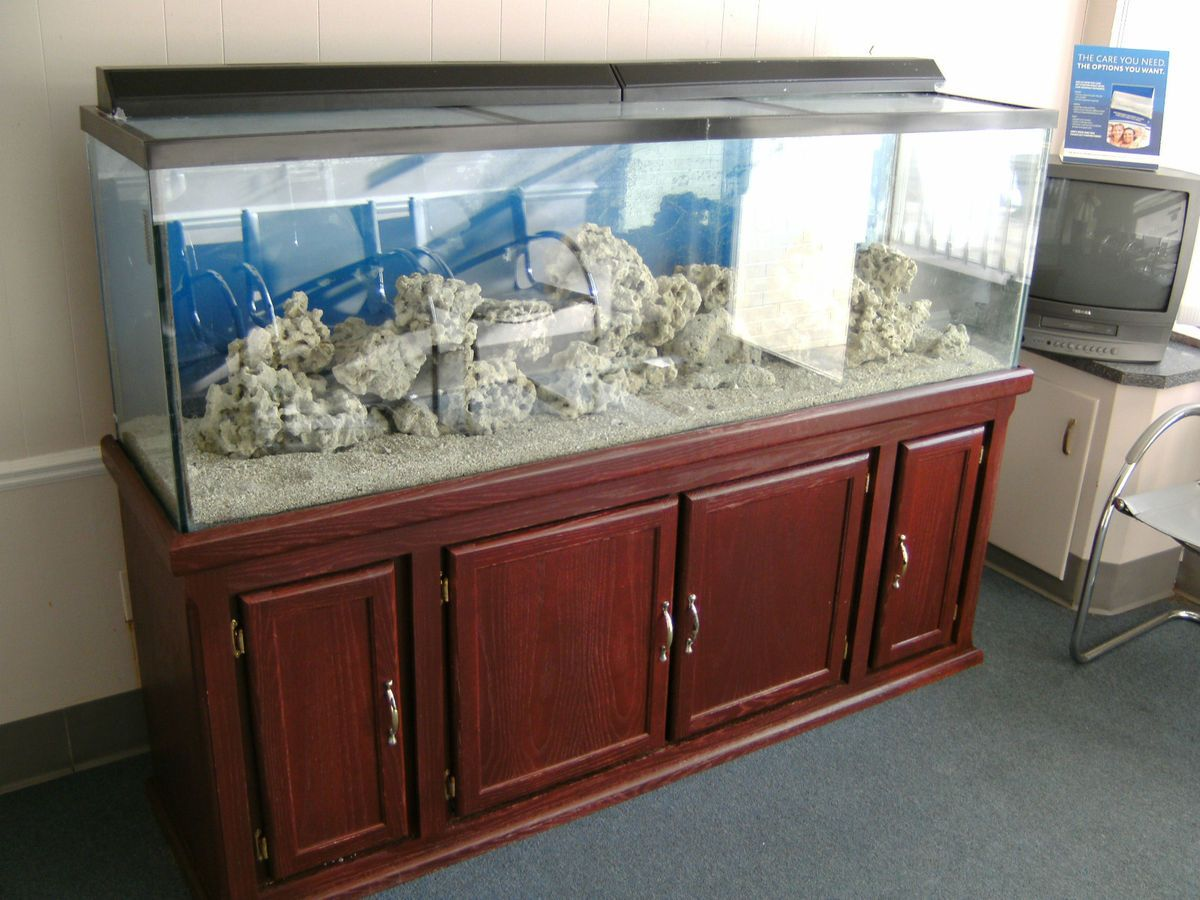 Beautiful 125 gal fish tank aquarium on stand with filters for 125 gallon fish tank stand